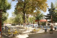 Cafeteria (1)