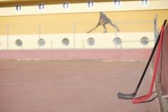 Hockey (5)