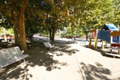 Parque (6)