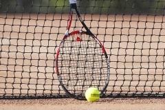 Tenis (15)